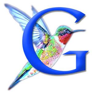 Hummingbird SEO