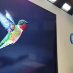 Колибри (Hummingbird), новият алгоритъм на Google